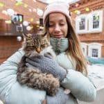 Jangan Kaget Kalau Kucing kamu Pergi dari Rumah, Bisa Jadi Ini Penyebabnya
